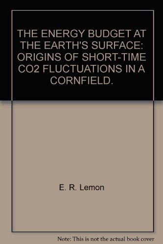 the-energy-budget-at-the-earths-surface-origins-of-short-time-co2-fluctuations-in-a-cornfield