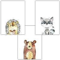 Frechdax 3er Set Kinderzimmer Babyzimmer Poster Bilder Din A4 | Waldtiere Portrait | Bär Fuchs REH Eule | Mädchen Junge Deko | Dekoration Kinderzimmer (3er Set Bär, Igel, Waschbär)