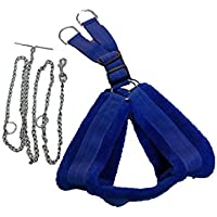 PETHUB FAR Harness Blue with Chain-RED Medium Dog