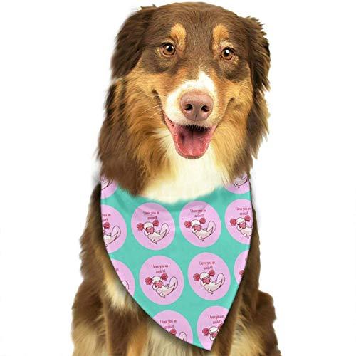Heart Pet Bandana Washable Reversible Triangle Bibs Scarf - Kerchief for Small/Medium/Large Dogs & Cats ()
