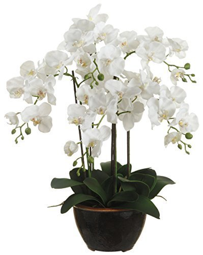 24-artificial-phalaenopsis-orchid-plant-in-pot-white-by-allstate-floral-craft