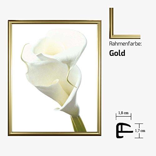 kunstdruck-prisma-lily-in-bloom-ii-weisse-lilie-blume-blute-40-x-50-cm-mit-kunststoff-bilderrahmen-a