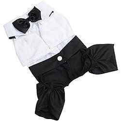 Moon mood® Ropa de Perro Perrito Gato Halloween Costume Ropa para Mascotas Ropa de Vestir - Suministros para mascotas(Cuello:22cm)