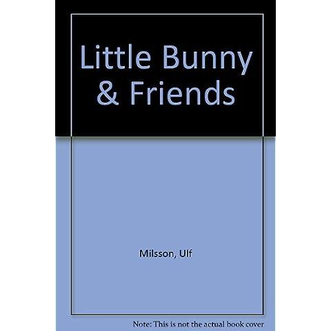 Little Bunny & Friends