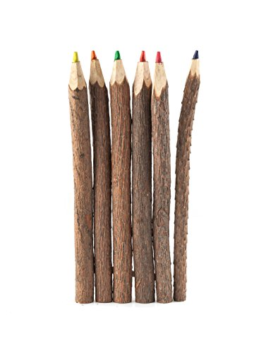 kikkerland-twig-coloured-pencil-s-6