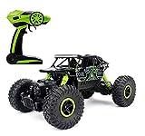 RC Rock Crawler, 2.4Ghz 1/18 RC Fuoristrada 4WD Monster Truck Veicolo Giocattolo ricaricabile del giocattolo di (Verde)