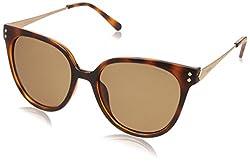 Polaroid Polarized Square Womens Sunglasses - (PLD 4047/S R8V 54IG|54|Brown Color)