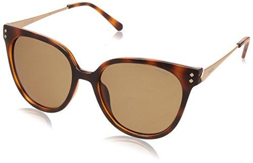 5d00572b17796a Ig eyewear (designer glasses) le meilleur prix dans Amazon SaveMoney.es