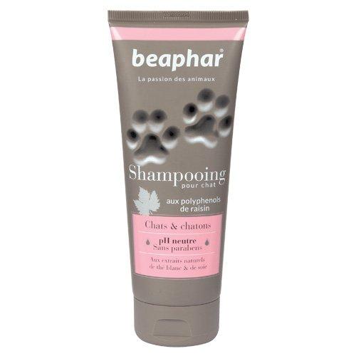 Beaphar - Champú Premium para gatos, 200 ml