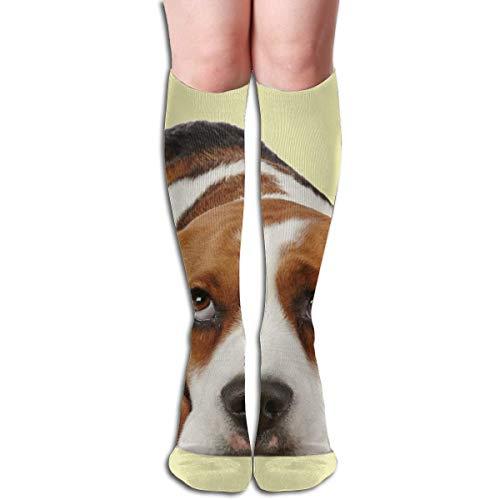 Basset Hound Dog Knee High Socks, Unisex Tube Compression Thigh Sock Crew Athletic Football Stockings ()