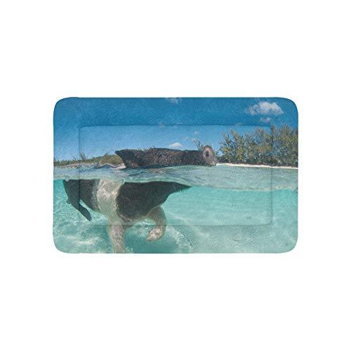Plosds Nette Schwimmen von Schwein extra große individuell Bedruckte bettwäsche weiche Hund Bett Couch für welpen und Katzen möbel Matte höhle pad Abdeckung Kissen innen 36x23 Zoll