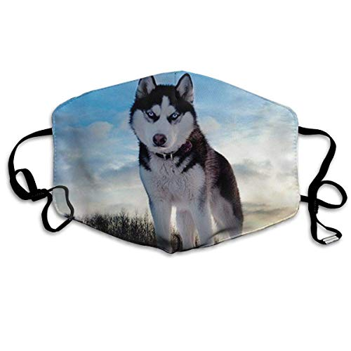 Masken, Masken für Erwachsene, Mouth Mask, Husky Huskie Dogs Breathe Healthy. Dust, Allergy & Flu Mask - Comfortable, Washable - Ideal for Dog Grooming - Protection from Dander, Hair, Dust,
