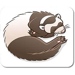 Luancrop Tapis De Souris Animal Sleeping Cartoon Furet Caractère Mignon Domestique Amusant Funny Mousepad pour Ordinateurs Portables, Ordinateurs De Bureau Tapis De Souris, Fournitures De Bureau