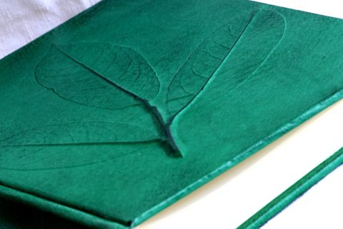 Bilderrahmen 38x 38Hochzeit Empfang Zeremonie wichtig Sacramento Echt Leder grün