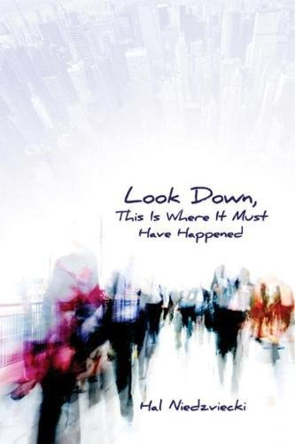 Book cover for Look Down, This is Where It Must Have Happened