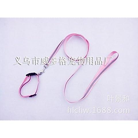 ZPP-Alta qualità dei materiali di consumo di pet pet riflettente in nylon guinzaglio collare collari collare,polvere,1.0*120cm