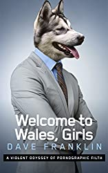 Welcome to Wales, Girls: A Violent Odyssey of Pornographic Filth