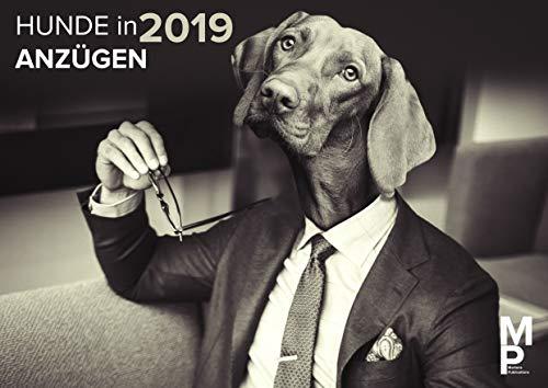 Hunde in Anzügen 2019 - Der Wandkalender, Hundekalender, Tierkalender und Monatskalender 2019 - Lustige Hundemotive für das ganze Jahr