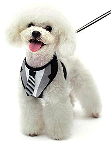 Dogge EasyGo Schwarz Sonnenbrille Soft Hundegeschirr mit Passender Leine für Katze Hund Welpen, S, Schwarz Stripe Down Vest