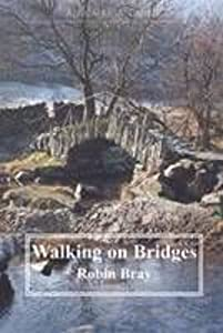 Walking on Bridges: Walks Along the Packhorse Routes and Bridges of the Lake District (A Cumbria Guide), by Robin Bray