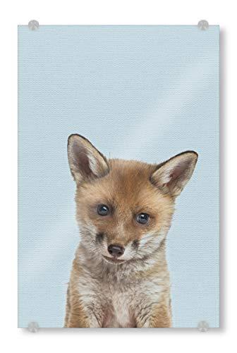 artboxONE Acrylglasbild 45x30 cm Für Kinder Baby Fox Bild hinter Acrylglas - Bild Fox Baby Fox Nursery - Fox-bild Baby