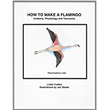 How to Make a Flamingo: Anatomy, Physiology and Taxonomy (English Edition)