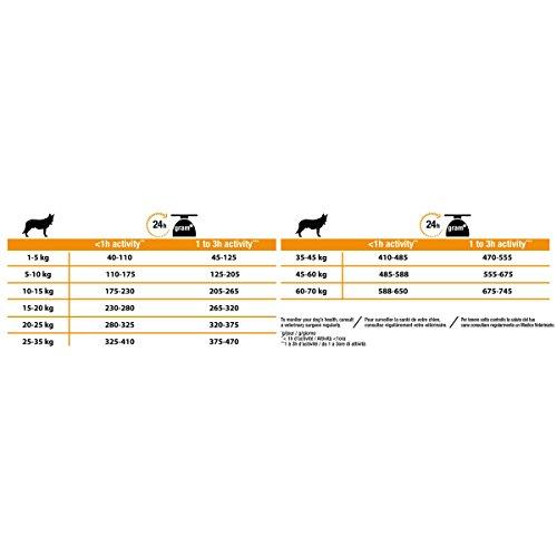 PURINA PRO PLAN Dog Medium Adult with OPTIBALANCE Rich in Chicken Dry Food, 14 kg