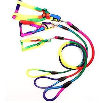 PiniceCore Arc-en-Pet Dog Leash Training Durable Walking Nylon Leash 120cm Chiens Chats Collier Harnais Laisses pour Ceinture Pet Supplies Corde
