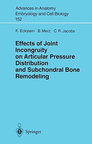 Effects Of Joint Incongruity On Articular Pressure Distribution And Subchondral Bone Remodeling (advances In Anatomy, Embryology And Cell Biology Book 152) por B. Merz