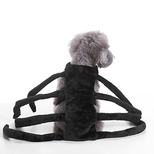 Dogs apparel the best Amazon price in SaveMoney.es 0029b198b6c