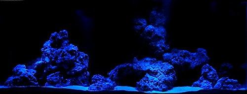 CREATIVE LIGHTS - AQUARIUM MONDLICHT 2 x 30 CM LED LICHTLEISTE + DIMMER KOMPLETTSET INKL. NETZTEIL FLEXI-SLIM BLAU - 4
