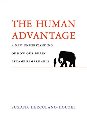 The Human Advantage: A New Understanding of How Our Brain Became Remarkable (The MIT Press) (English Edition) Evolution Tabelle