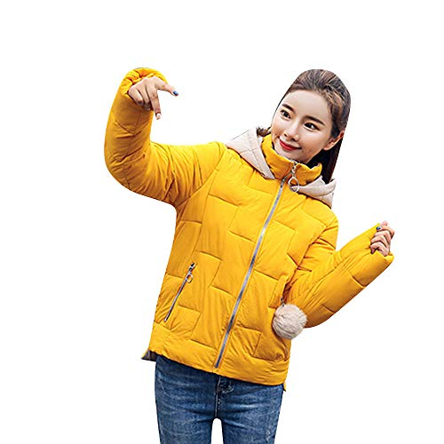 TWBB Damen Daunenjacke Frauen Winter Warm Faux Fur Mantel Mit Kapuze Dicker warm Jacke Pullover