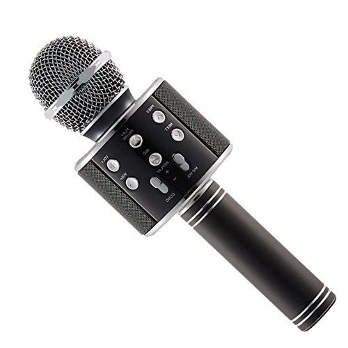 SEVEN X Handheld Wireless Bluetooth Microphone Stand with Speaker Audio Recording (Black) (Ws-858)