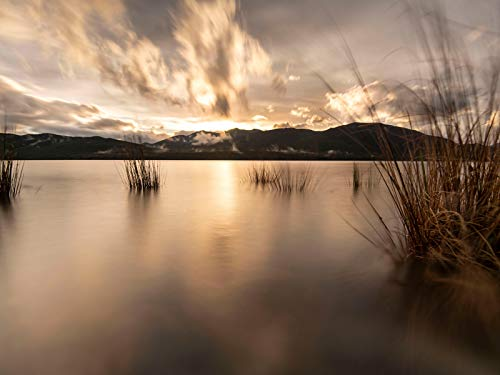 Neuseeland: Regen in Te Anau - Die regenreichste Region der Welt