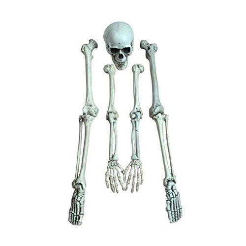 BESTOYARD Halloween Dekoration Statue Simulation Menschliches Skelett Modell Medizinische Lehre Requisiten Scary Spukhaus Bar Kostüm Party Requisiten Dekor Streich Spielzeug