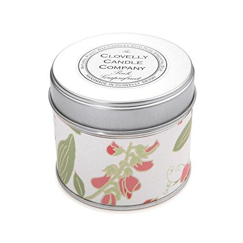 Clovelly Candle Co. Natürliche Handgefertigte Duftende Pink Grapefruit große Dosenkerze aus Sojawachs