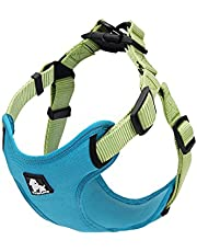 "PetsUp Nylon Dog Harness for Large Medium Small Puppy Dogs (Sea Blue, 33"" to 43""cm)"