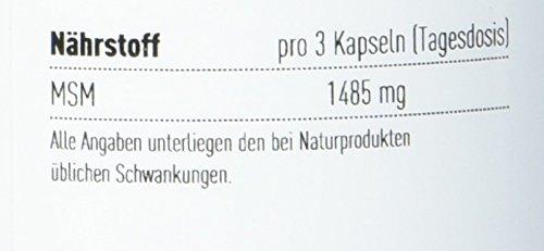 CaloryCoach MSM Kapseln – 90 Stück (Methyl Sulfonyl Methan)