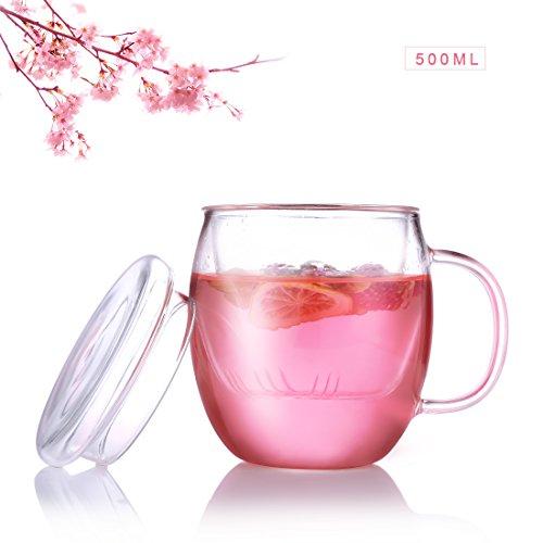 Oneisall Dgybl076 500 ml clair borosilicate résistant à la chaleur Théière en verre avec couvercle plat et une Passoire, fleur Pot de café thé