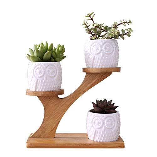 Preisvergleich Produktbild JNYZQ Kreative saftige Pflanzgefäß-Blumentopf-Dekor-Verzierung for Innenministerium-Schreibtisch