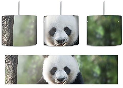 Niedlicher Panda isst Bambus inkl. Lampenfassung E27, Lampe mit Motivdruck, tolle Deckenlampe, Hängelampe, Pendelleuchte - Durchmesser 30cm - Dekoration mit Licht ideal für Wohnzimmer, Kinderzimmer, Schlafzimmer