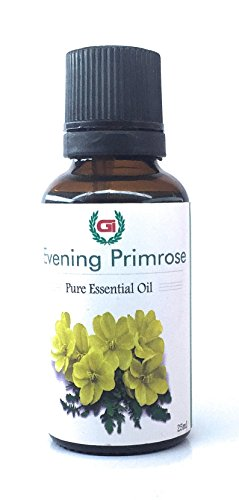 Grasse International -Evening Primrose Oil - 25 ML - 100% Pure, Natural- Exceptional Choice for Aromatherapy, Massage - Suitable for All Skin Types Pure Oil,Use for Hair Cair,Skin Care, Essential Oil dilution(as Carrier Oil) (25ML)