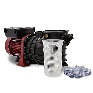 Berlan Pompa per Piscina elettrica 550 W Portata 10000 l/h Pompa di filtrazione