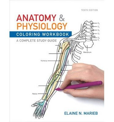 [Anatomy and Physiology Coloring Workbook: A Complete Study Guide] [by: Elaine N. Marieb]