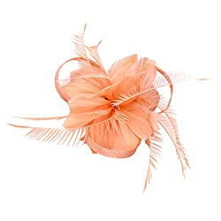Phenovo Vintage Woman Feather Fascinator Hair Clip for 20s Great Gatsby Charleston Party Tea Party - watermelon red