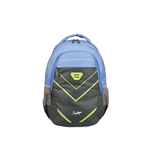 Skybags 26 Ltrs Grey Casual Backpack  BPEON1GRY