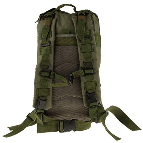 Generic Outdoor-militärische Taktische Wanderrucksack Rucksack Camping Wandern Trekking Reisen Tasche 30L Armee Grün