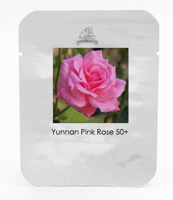 1 Professional Pack, 50 graines / paquet, Yunnan Pink Rose Garden Flower Belle # NF423