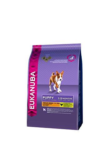 Eukanuba Puppy Welpenfutter für mittelgroße Rassen - Ausgewogenes Trockenfutter mit verbesserter, neuer Rezeptur für Welpen im Alter von 1-12 Monaten in der Geschmacksrichtung Huhn - 1 x 1kg Beutel